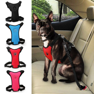 Frenchies Car Seat Harness
