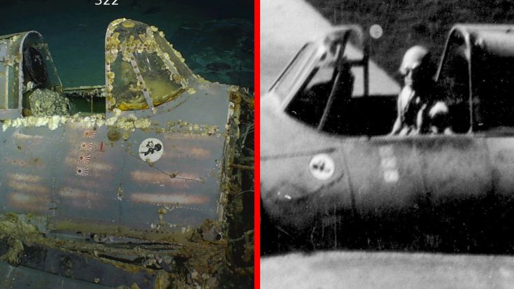 Wildcat Just Found At USS Lexington Wreck More Important Than You Think   Frontline Videos