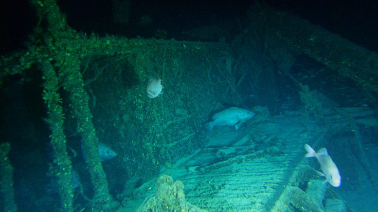 Wwii Songs   Expedition Into German U-Boat Off North Carolina Coast – 45 Bodies Still Trapped Inside   Frontline Videos