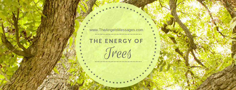 The Energy of Trees