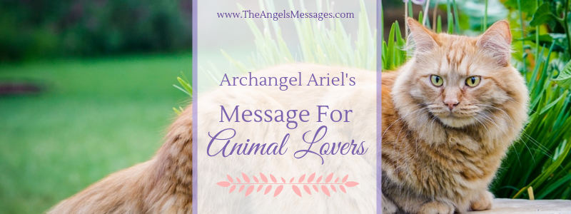 Archangel Ariel's Message for Animal Lovers