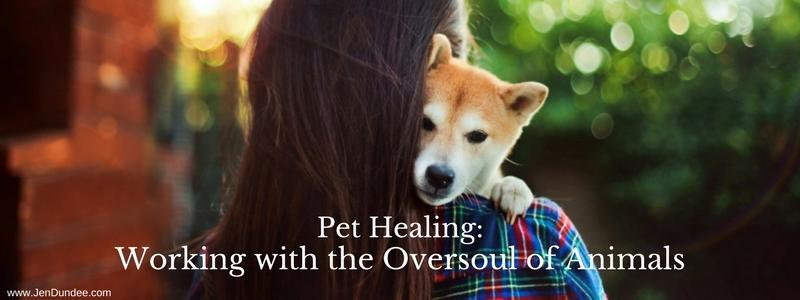 Pet Healing: Working with the Oversoul of Animals
