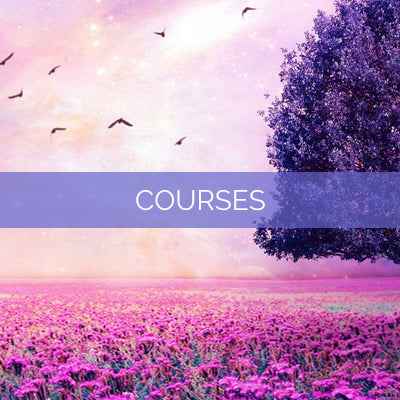 Multi-Month Courses
