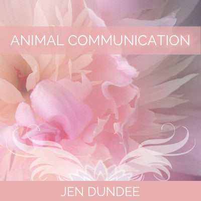 How to Communicate with Animals: Audio Class