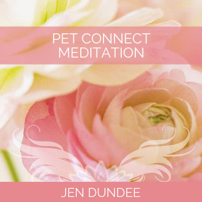 Pet Connect Meditation
