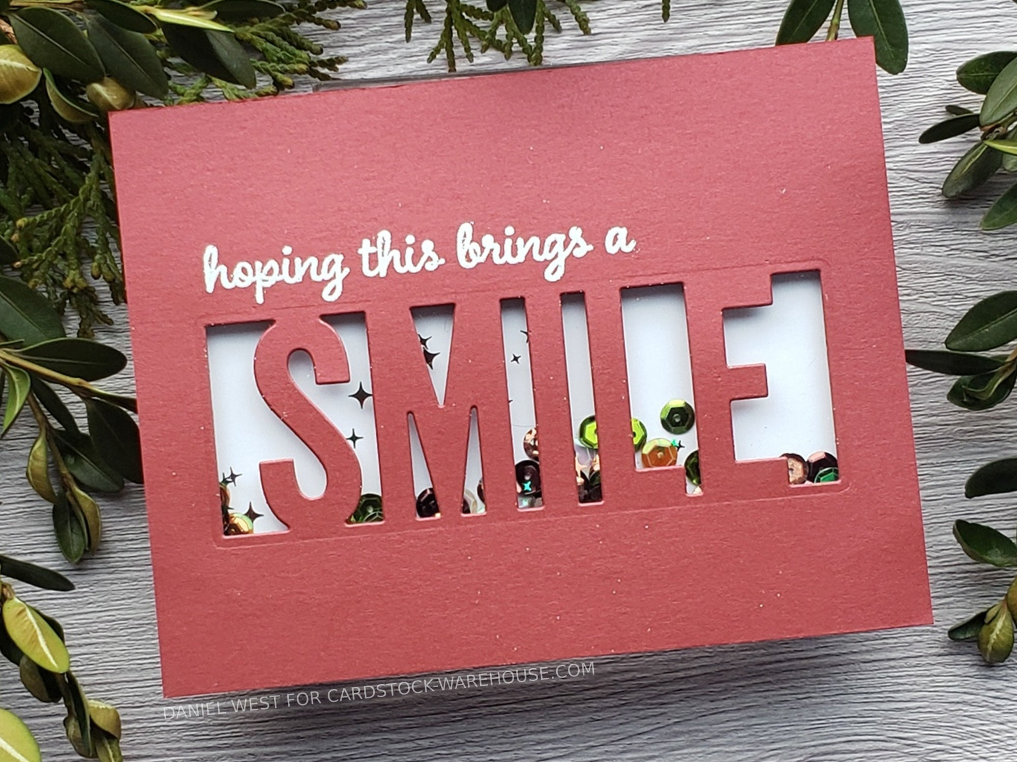 DIY Smile Shaker Card