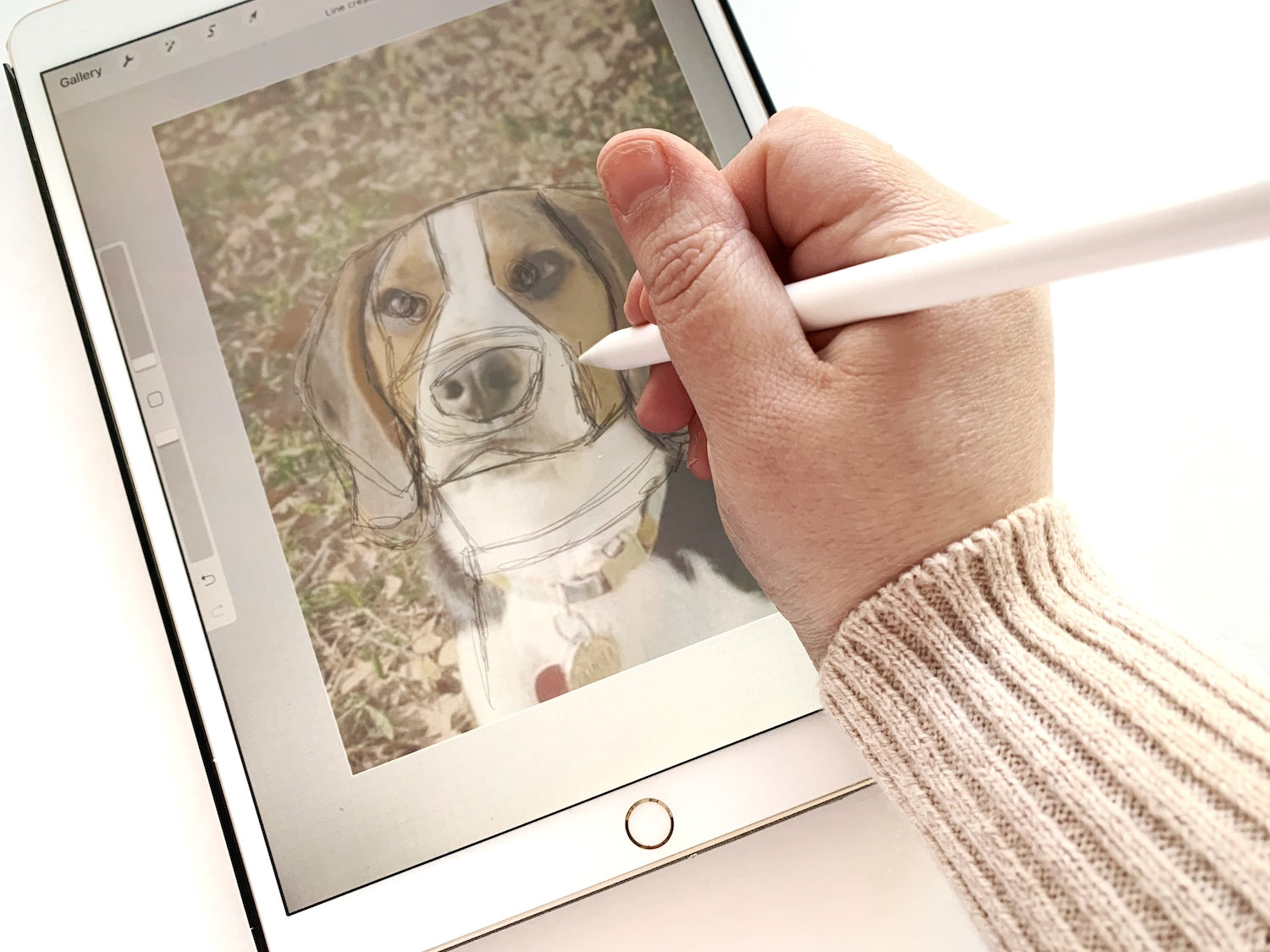 Tracing dog photo in procreate to create layered paper dog portrait