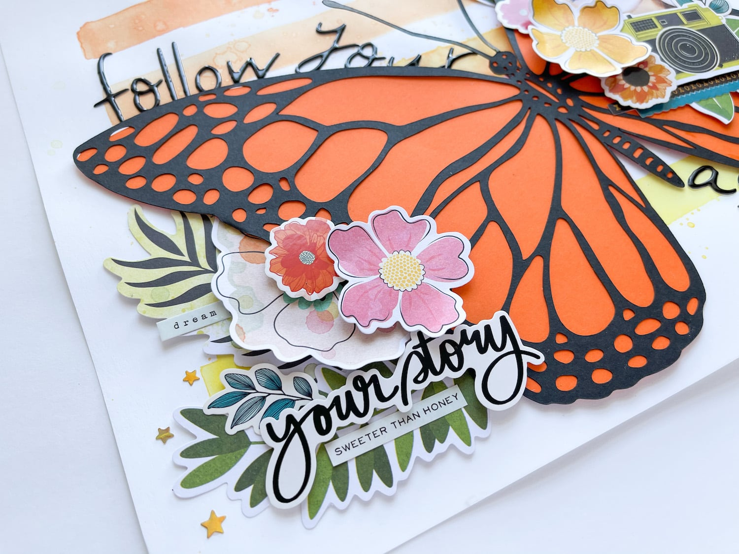 butterfly cut file on blacktop and arancio