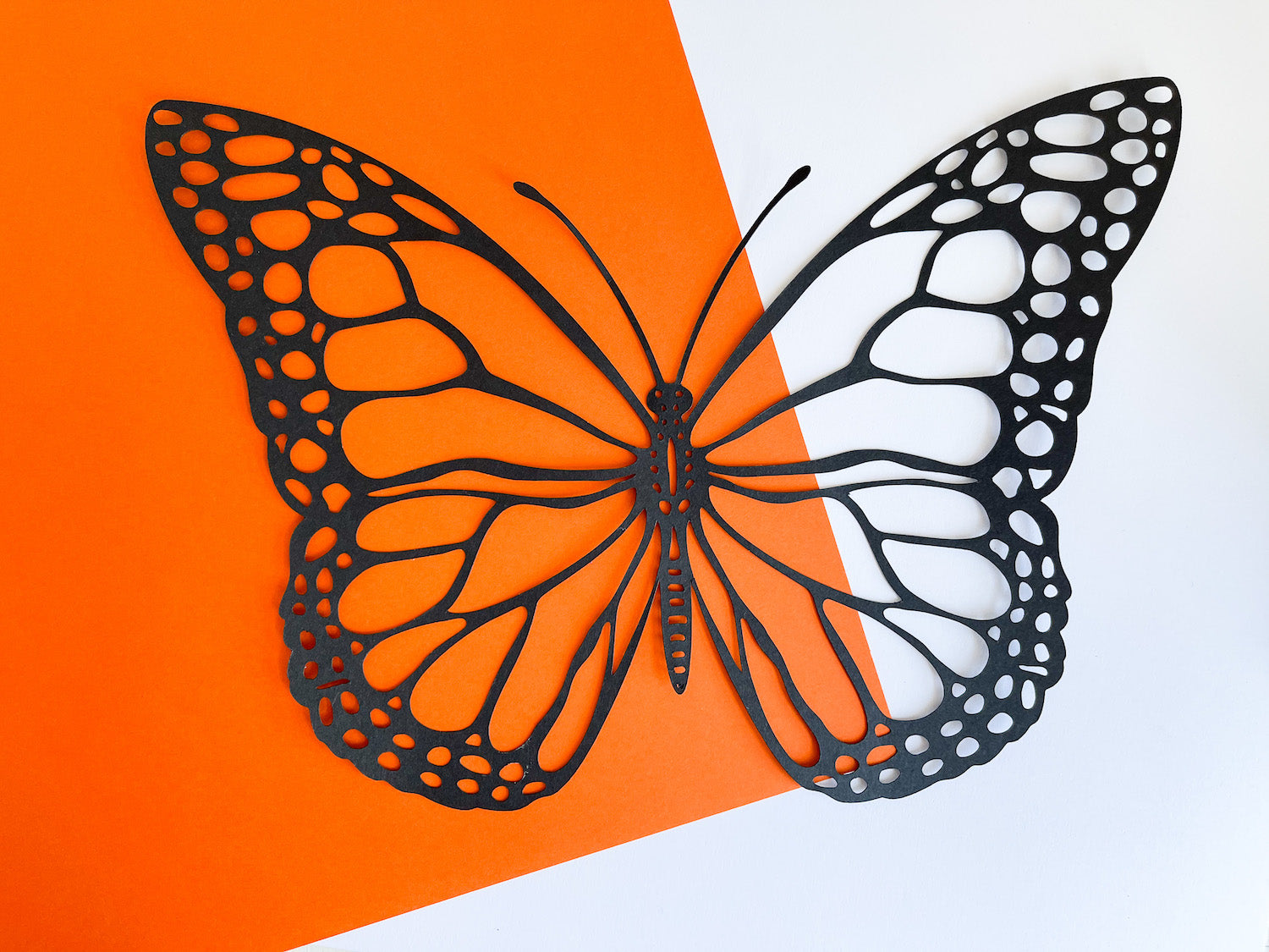 butterfly cut our of Blacktop Foundations Paper