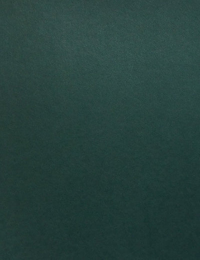 Colorplan Racing Green Cardstock