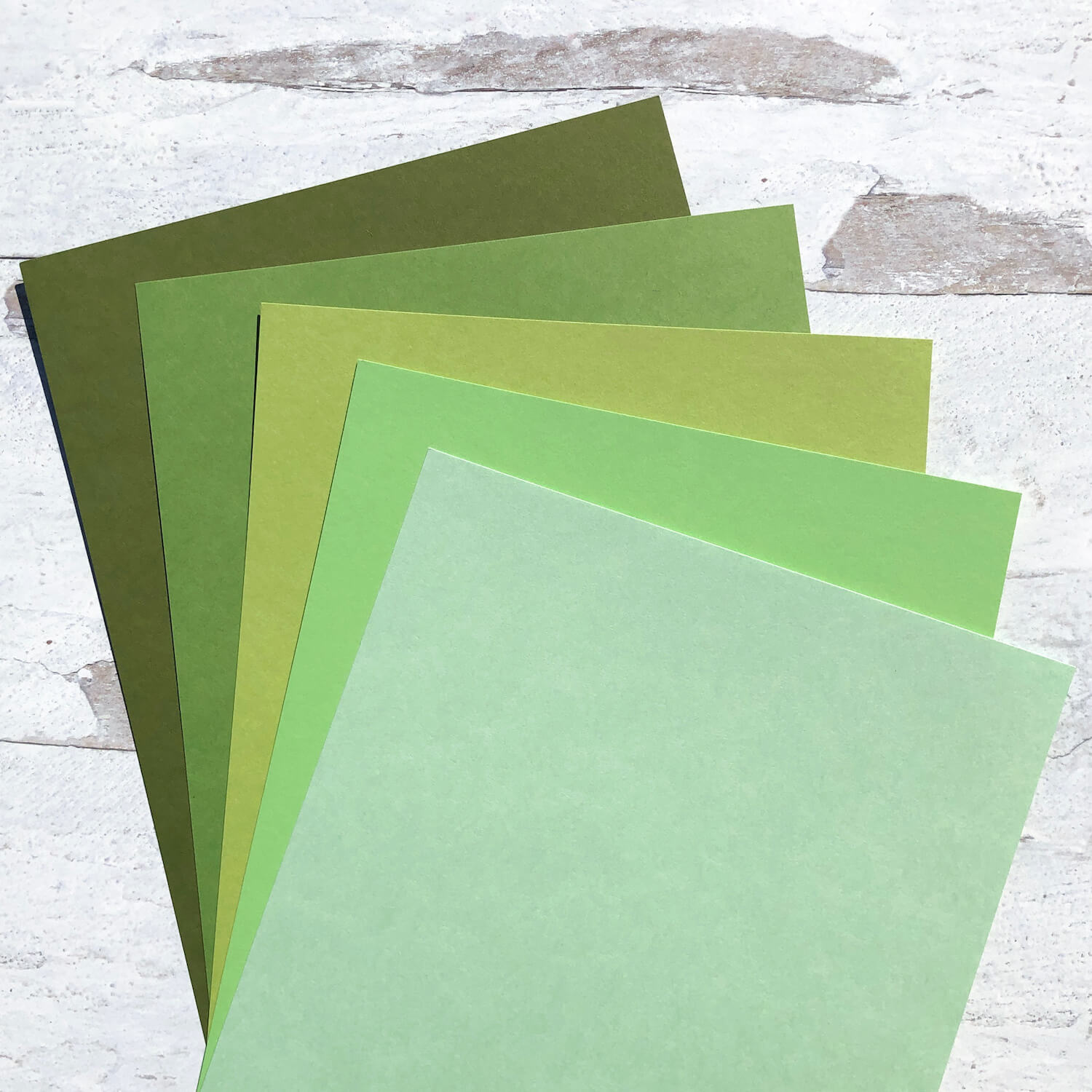 Fields of Green Cardstock Collection