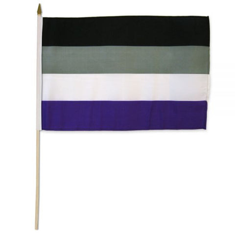 "12"" x 18"" Asexual Stick Flag"