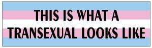 This Is What A Transexual Looks Like Bumper Sticker
