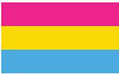 Pansexual Flag Bumper Sticker