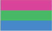 Polysexual Flag Bumper Sticker