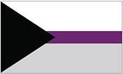 Demisexual Flag Bumper Sticker