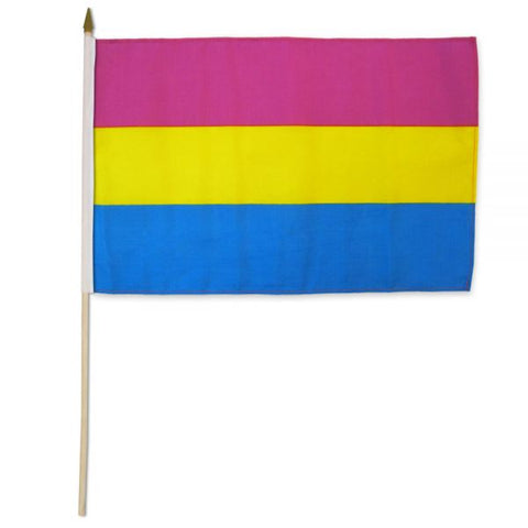 "12"" x 18"" Pansexual Stick Flag"