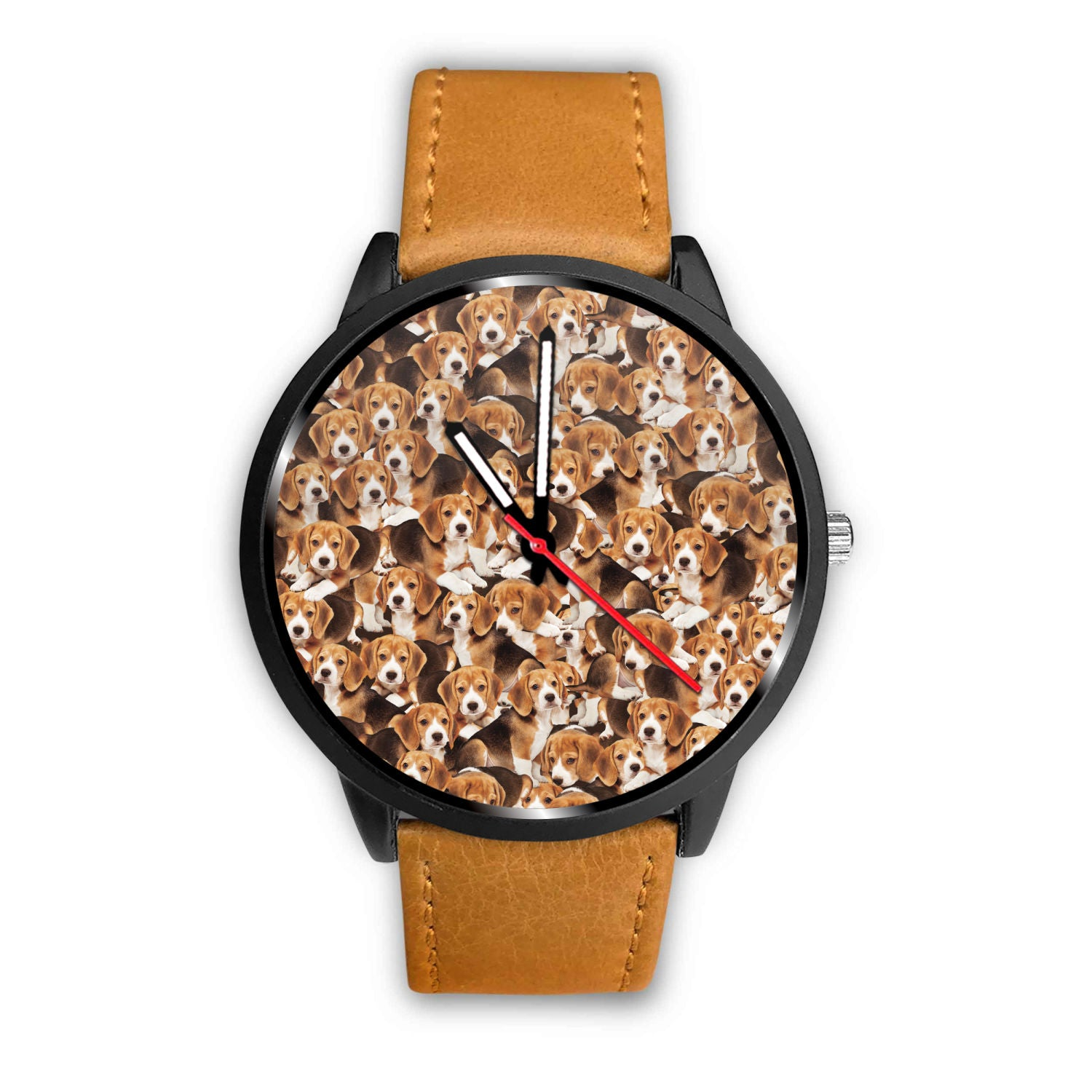 Beagles Watch