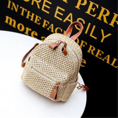 DeeTrade Womens Handbag Straw Mini Backpack (3 colors)