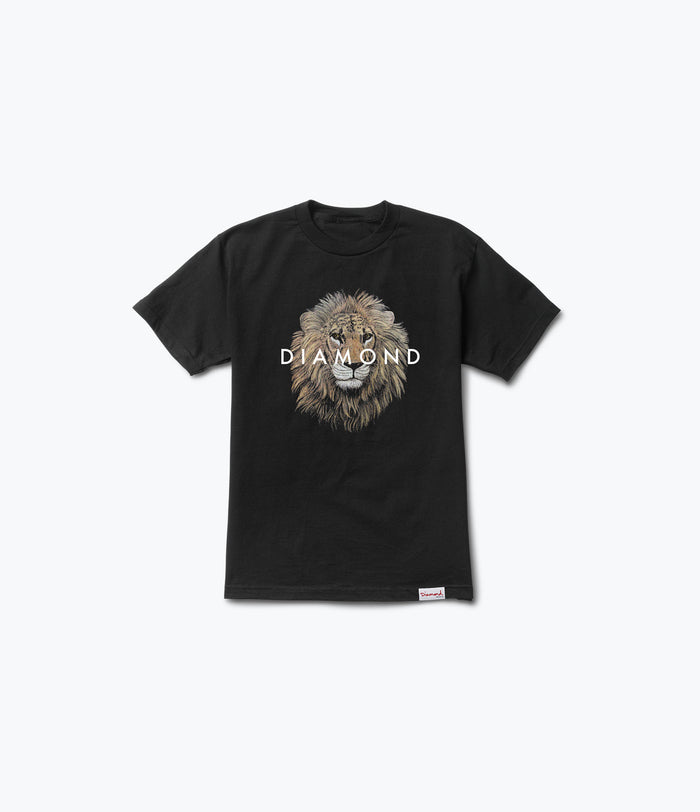 Apex Tee, Summer 2017 Delivery 2 Tees -  Diamond Supply Co.