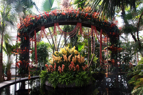 The Orchid Show at The New York Botanical Garden
