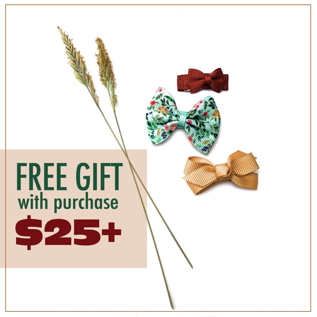 Spend Only $25 - Get FREE* Summer Bows!