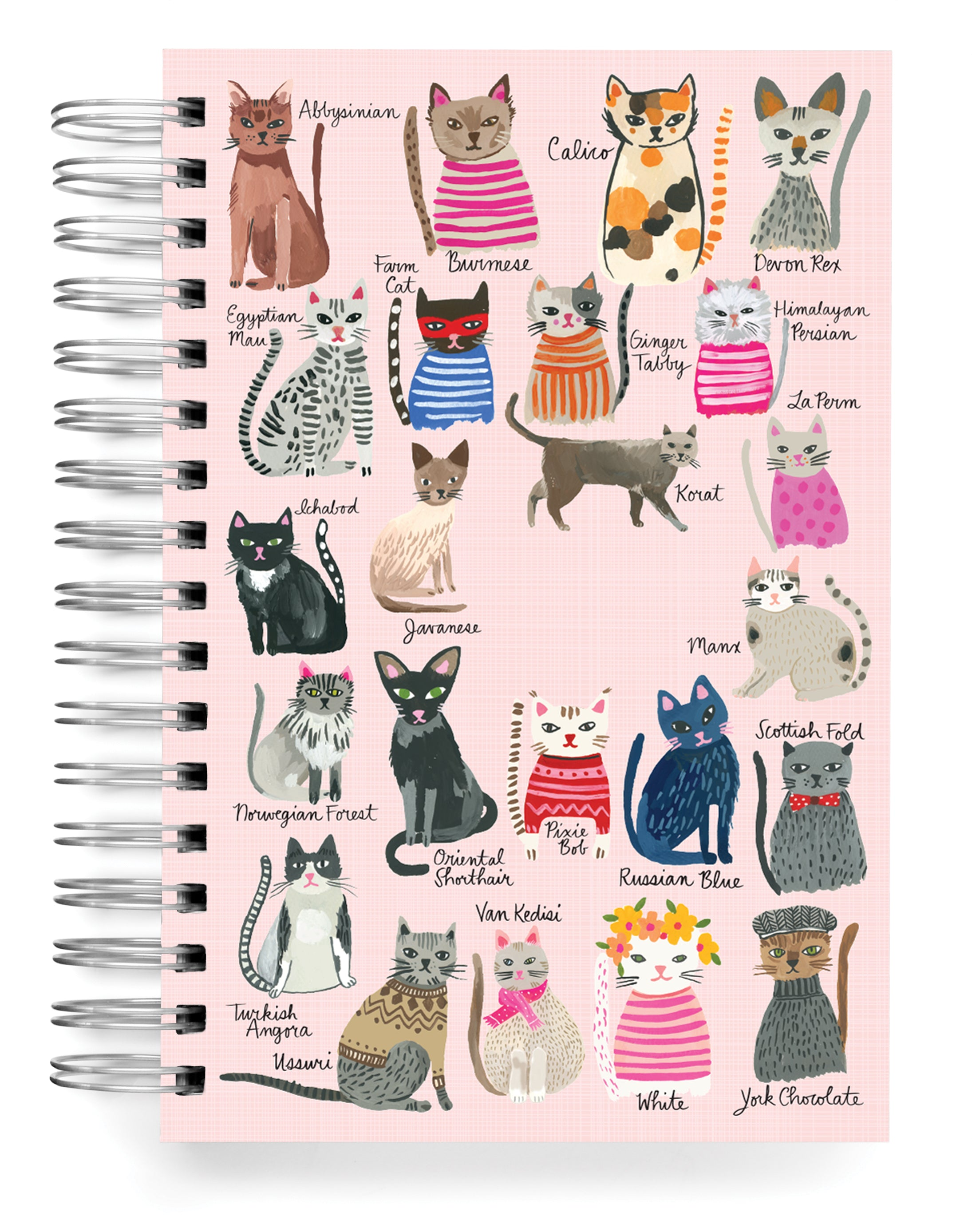 Cool Cats PERSONALIZED Jumbo Journal