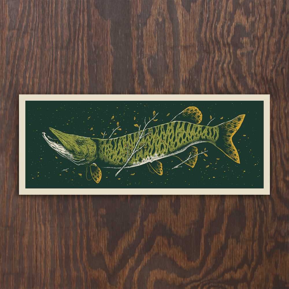 Tiger Muskie Screen Print