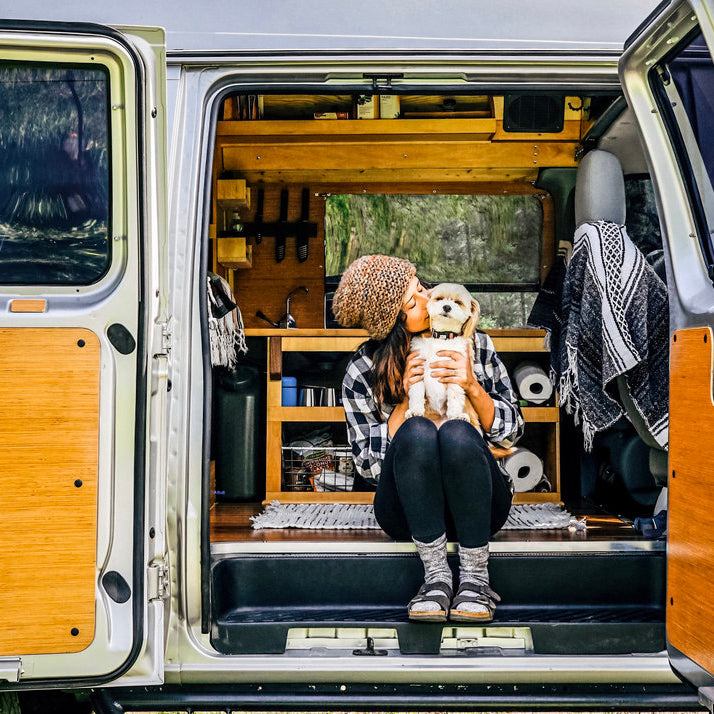 Vanlife Diaries: Finding Freedom on the Open Road