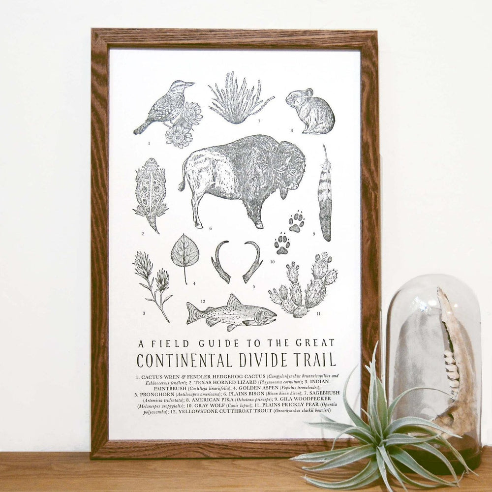 Continental Divide Trail Field Guide Print