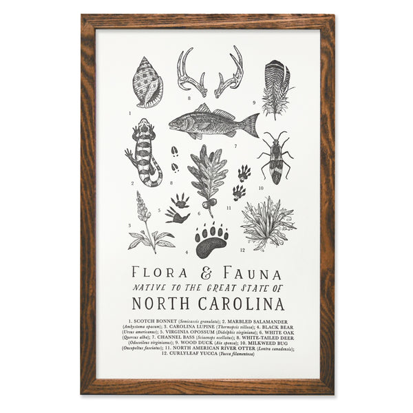 Wild Wander - North Carolina Field Guide Print