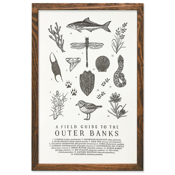 Wild Wander - Outer Banks Field Guide Print