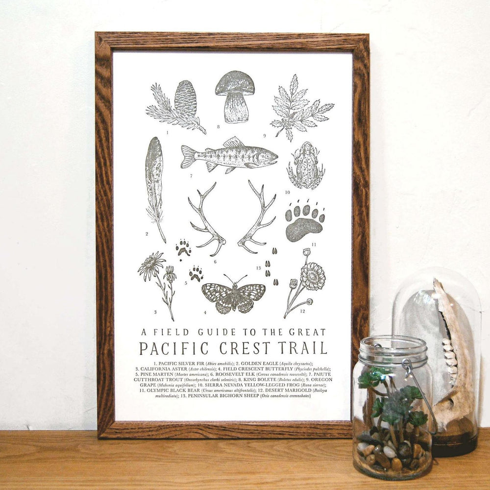 Pacific Crest Trail Field Guide Print