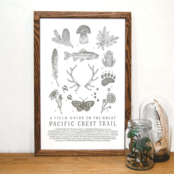 Wild Wander - Pacific Crest Trail Field Guide Print