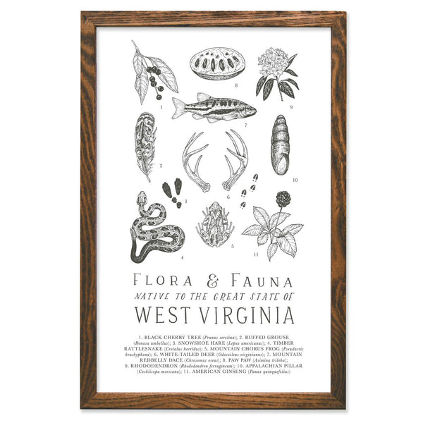Wild Wander - West Virginia Field Guide Print