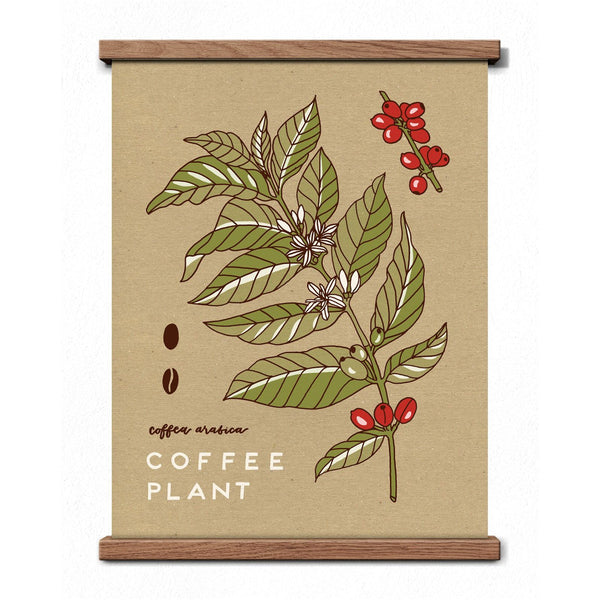 Worthwhile Paper - Coffee Plant Print