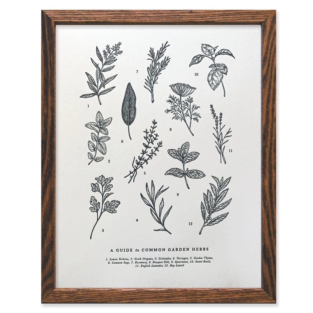 Guide to Garden Herbs Print