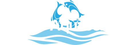 Tampa Aquaculture Inc.