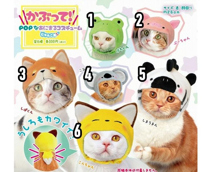 Cat Hat Costumes