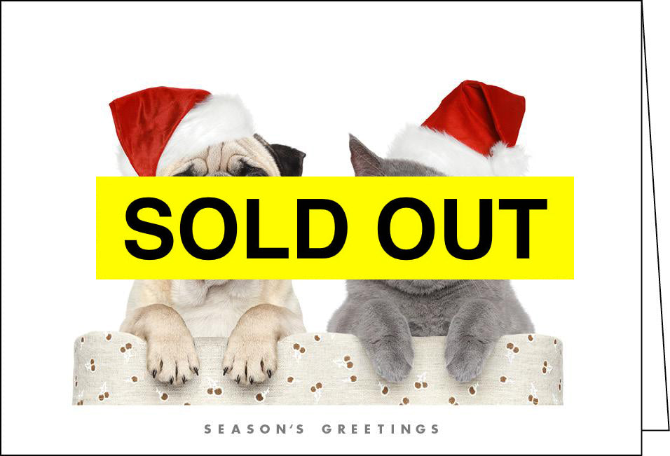 NZ904 Dog & Cat - SOLD OUT