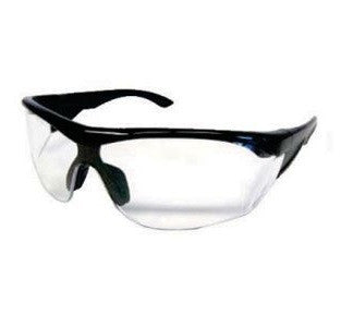 Clear Safety Glasses w/ Antifog