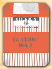 Otterbein - Natural Hydraulic Lime 2.0 - 25 KG - Atlas Preservation