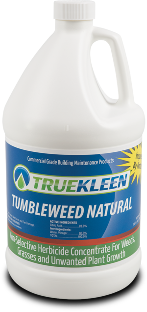 Tumbleweed Natural - 1 Gallon-TrueKleen-Atlas Preservation