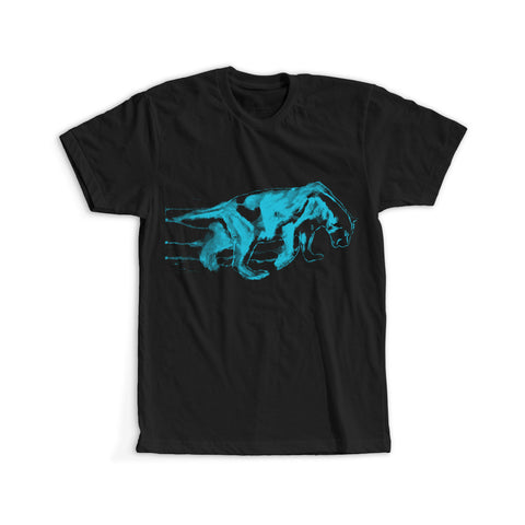 Carolina Panthers Inspired - Queen City Tee