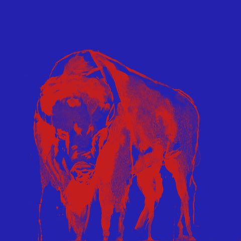 Buffalo Bills Inspired - Nickletown Print