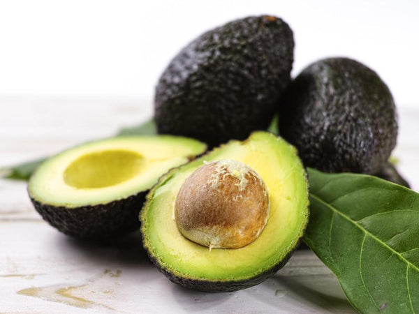 Ingredient Highlight <br>Avocado Oil