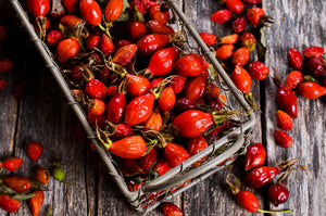 Ingredient Highlight <br>Rosehip Seed Oil