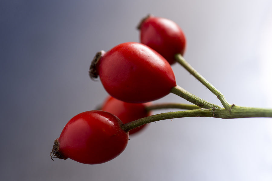 benefits of rosehip oil for skin and hair lupus