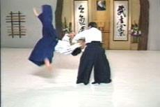 Aikido Principles & Techniques by Mary Heiny (On Demand)