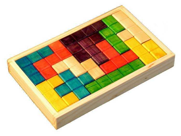 Wooden Color IQ Puzzle in Tray - 12 Pcs